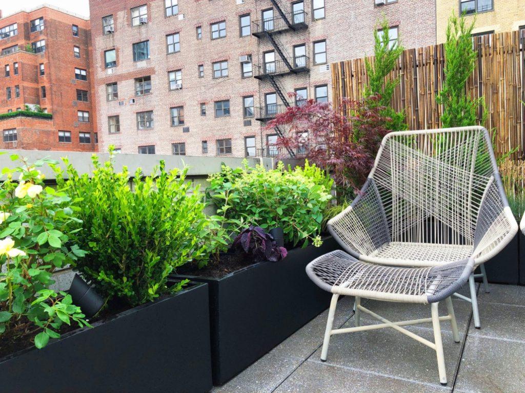 Ues Rooftop Terrace Amber Freda Landscape Design