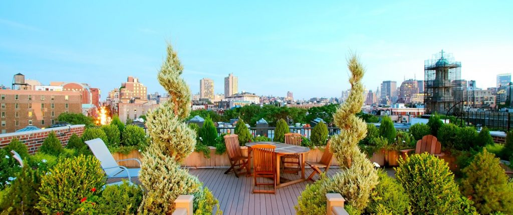 Rooftop Gardens Ancient Origins And Modern Benefits Amber