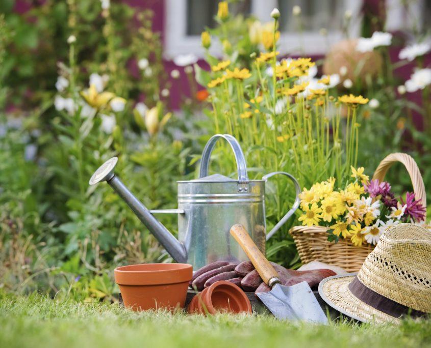 gardening_poster-845x684