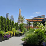 manhattan garden maintenance services