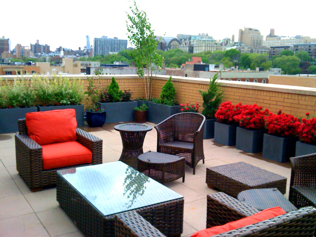contemporary roof garden harlem nyc