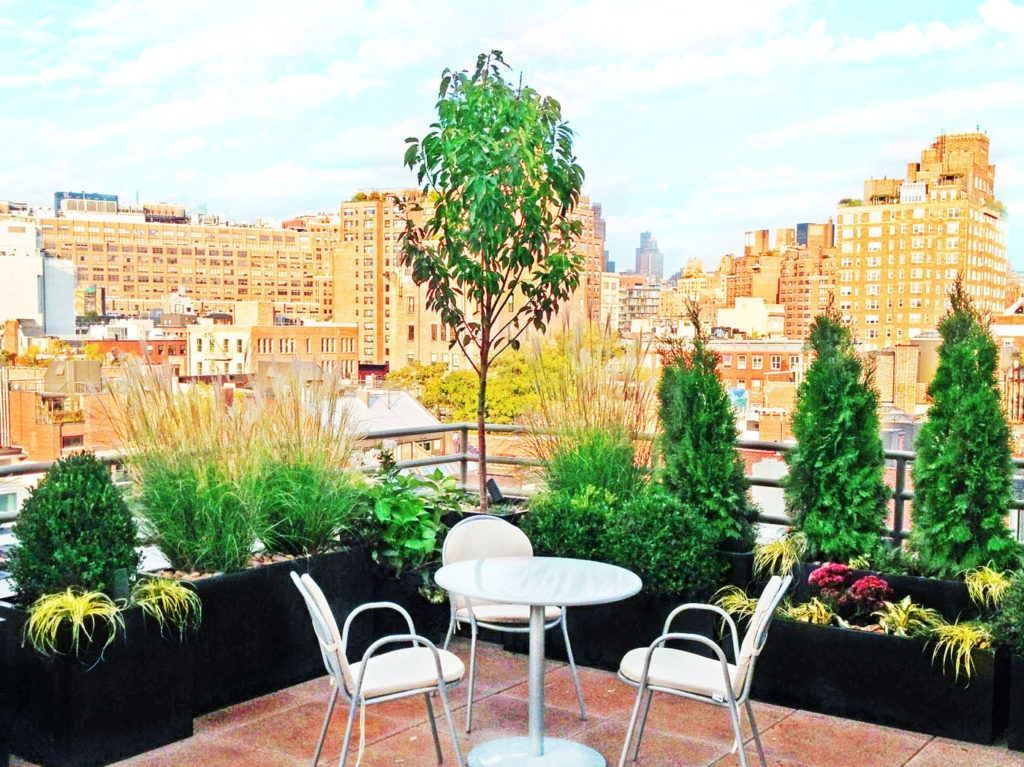west village rooftop garden deck with metal planters